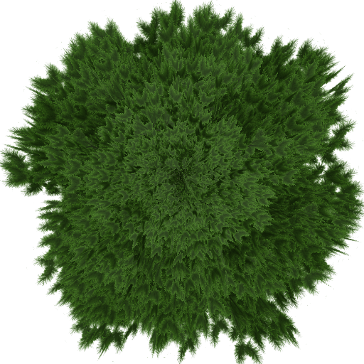 Tree61.png