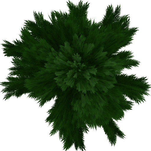 Tree93.png